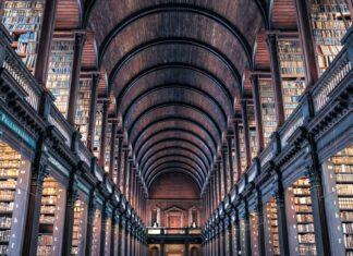 praca w bibliotece uniwersyteckiej