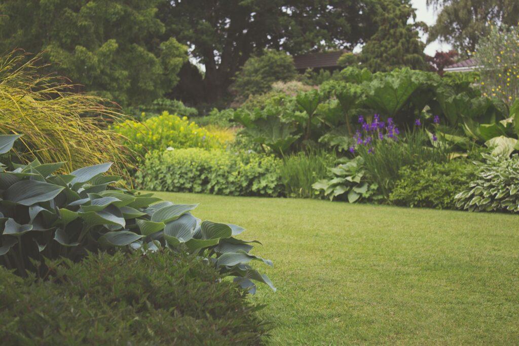 ogród permakulturowy