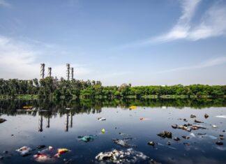 zanieczyszczenie środowiska