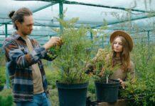 zawód ogrodnika